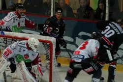 Hamburg Crocodiles vs. Piranhas 13.11 (16).jpg