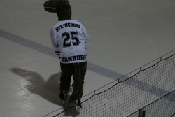 Hamburg Crocodiles vs. Piranhas 13.11 (1).jpg