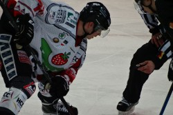 Hamburg Crocodiles vs. Piranhas 13.11 (11).jpg